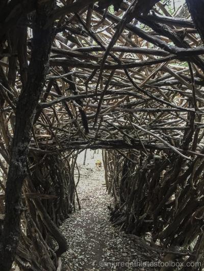 Cedar tunnel